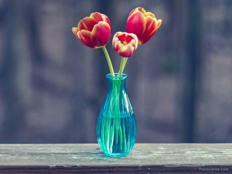 گل و گلدون