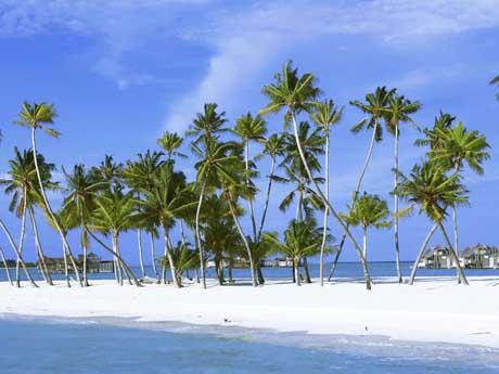 ساحل مالدیو