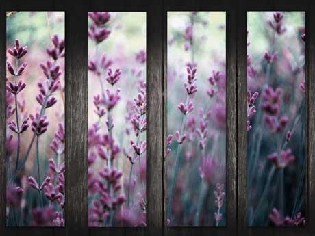 تابلو گل های بهاری