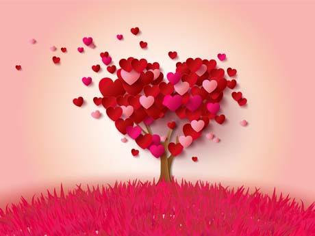 درخت قلب