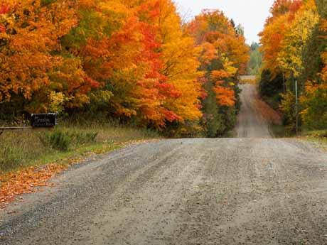 جاده زیبای پاییزی