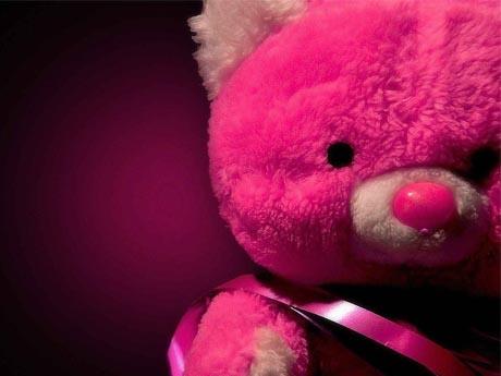 عروسک خرس پشمالو