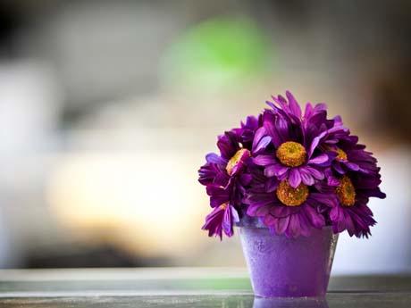 گل و گلدان زیبا