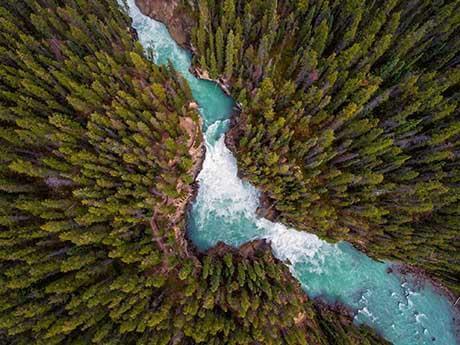 بکگراند تصویر هوایی از جنگل پر درخت و رودخانه